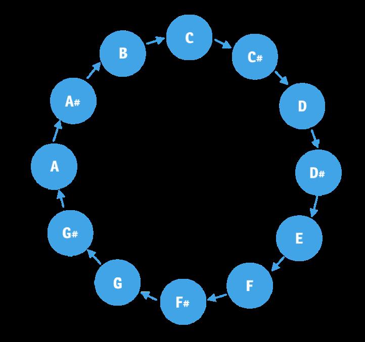 4. Cycle